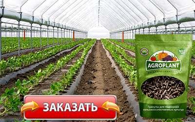 Удобрение Агроплант купить