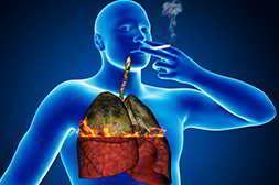 easysmoke универсален, очищает органы от ядов и токсинов