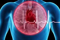 Гипертофорт нормализует кровообращение.