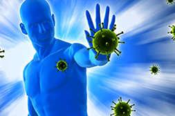 Состав Гельмифлора повышает иммунитет.