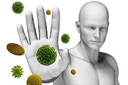Уромидол укрепляет иммунитет.